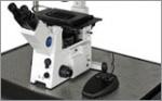 CCD и CMOS -камеры для научных исследований биологических объектов